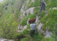 Köylüler, İnek Sürüsünü Kurtarmak İçin Kayaları Parçaladı