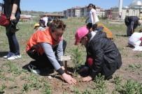 Öğrenciler 200 Fidanı Toprakla Buluşturdu