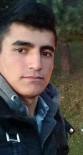 CİNSEL TACİZ - 17 yaşındaki kız, yaylada kendisini taciz eden genci öldürdü!