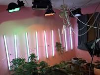 JANDARMA KARAKOLU - Apartman Dairesinde Uyuşturucu Fabrikası