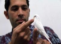 MUHABBET KUŞU - Bu Kuş Hem Muhabbet Hem Dua Ediyor