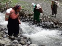 OSMAN ACAR - Köylüler Güvenlik Gerekçesiyle Boşaltılan Yaylalara Geri Dönmek İstiyor