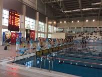 Paletli Yüzme Yarışlarında İkinci Gün Müsabakaları Tamamlandı