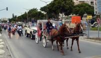 APOLLON TAPINAĞI - Didim'de Engelliler Haftası 3 Gün Kutlanacak