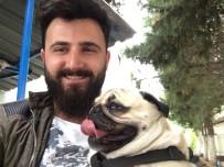 MUSTAFA YıLDıZ - Sosyal Medya Bu Köpeği Konuştu