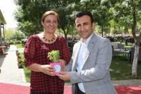 KANYON - Türk Sağlık-Sen'li Kadınlardan Çifte Kutlama
