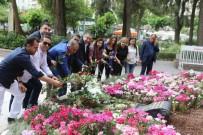 MÜSAMAHA - AK Partili Delican, Anneler Günü'nü Zübeyde Ana'nın Huzurunda Kutladı
