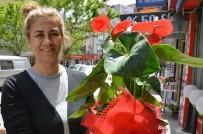 Anneler Günü'nün Vazgeçilmezi Çiçekler