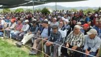 YAĞLI GÜREŞ - Burhaniye Güreşlerinde Fatih Atlı Başpehlivan Oldu