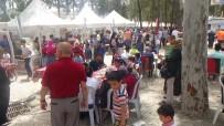 İÇ SAVAŞ - Kırıkhan'da Ciğer Festivali