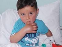 GÜRGENTEPE - 3 yaşındaki çocuğu hastanede yılan ısırdı!