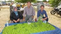 Burhaniye'de Yerli Ürünler Pazarda Yerini Aldı