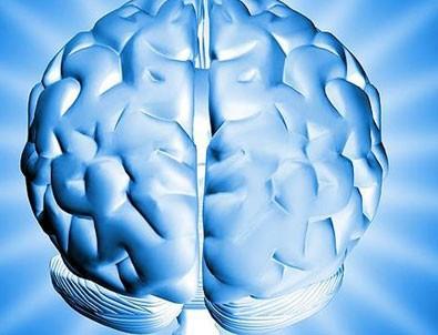 Mikro devre üzerinde beyin hücreleri üretildi!