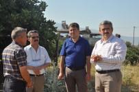 SOSYAL TESİS - Nazilli Belediyesi Güzelköy'e Çok Amaçlı Sosyal Alan Kazandırıyor