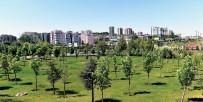 İLKBAHAR - Başkent'te 150 Bin Ağaç Toprakla Buluşacak