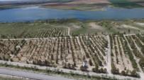 TRAFİK EĞİTİM PARKI - Cihanbeyli'ye Hobi Bahçeleri Oluşturuldu