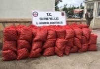 SAHİL YOLU - Edirne'de 70 Bin TL'lik Kaçak Midye Ele Geçirildi