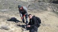 JEOLOJI - Gercüş'te Tarlada Bulunan Metallerin Sırrı Çözüldü