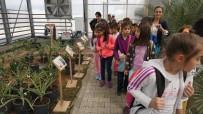 ELEKTRİK ENERJİSİ - Öğrenciler Projeleri Yerinde Gördü