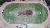 REKOR DENEMESİ - 2 Bin 791 Kişiyle Dünyanın En Büyük Balık Figürü Oluşturuldu