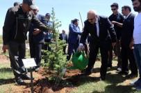 Bingöl'de '15 Temmuz Demokrasi Şehitleri Hatıra Ormanı' Oluşturuldu