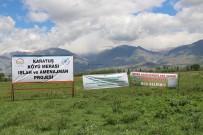 Karatuş Köyü Merası Otlatmaya Açıldı