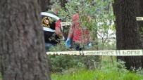 ŞÜPHELİ PAKET - Pendik'te Ormanlık Alanda 10 Kilo A-4 Patlayıcı Bulundu