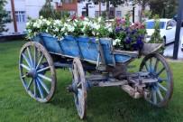 TALAS BELEDIYESI - Talas Belediyesi İlçeye 50 Adet Çiçek Dikiyor