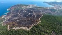 ORMAN YANGINI - Yanan Orman Yeşile Büründürülecek