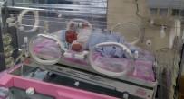DOĞUM HIZI - Doğurganlık Hızı Düştü