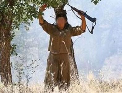 Mehmetçik terör örgütü PKK'ya Tendürek'i dar etti