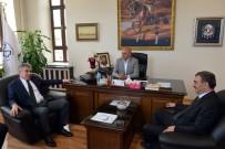 ALİ KORKUT - Müsteşar Yardımcısı Ayrım'dan Başkan Korkut'a Övgü