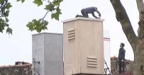 İŞ KAZASI - Beyoğlu'nda İşçilerin Ölümle Dansı Kamerada