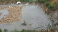 Sandıklı'da Bentonit Kuyusuna Düşen İneği İtfaiye Kurtardı