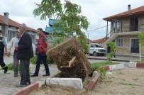 Sokağa Giren Tır, Elektrik Tellerini Koparıp Ağacı Yerinden Söktü