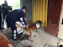 METRO İSTASYONU - Zehir Tacirlerine Nefes Kesen Şafak Operasyonu