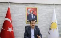 MEHMET ERDEM - Aydın'da 'Büyük Ova' Projesinde Son Aşamaya Gelindi