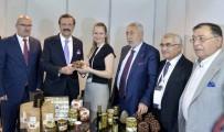 TÜRK PATENT ENSTİTÜSÜ - Aydın Kestanesi Zirvede