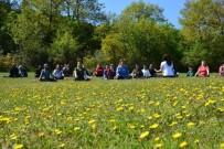 PAİNTBALL - Eko Turizm Tesisleri Aktivitelere Ev Sahipliği Yapıyor