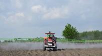 KÜLTÜR MANTARı - Genç Çiftçi Desteği Başvurularında Son Gün 5 Mayıs