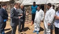 KOCAPıNAR - Van'da 'Şap' Hastalığı İle Mücadele