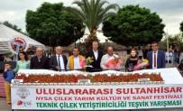 Aydın'da En İyi Çilek Yetiştiricileri Belirlendi
