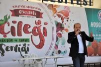 ERDEMIR - Osmanlı Çileği Şenliklerinde Kemençe Ve Horon Şov