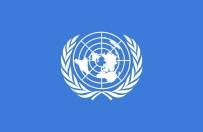 DIYALOG - BM Açıklaması 'Kültürel Çeşitlilik Tehdit Altında'