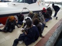 DEMOKRATIK KONGO CUMHURIYETI - Çanakkale'de 41 Kaçak Göçmen Yakalandı