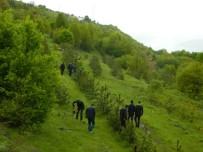 Posof'ta Uzlaşma Ormanı Oluşturuldu