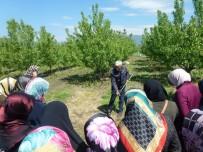 ÇALıŞMA VE SOSYAL GÜVENLIK BAKANLıĞı - Gürsu'da 'Altın Makaslı Kadınlar' Yetişiyor