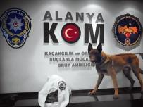 NARKOTIK - Otomobildeki Uyuşturucu Polis Köpeği 'Esco'ya Takıldı