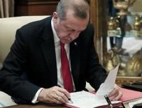 ANAYASA - Cumhurbaşkanı Erdoğan'dan kanun onayı