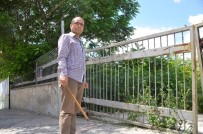Edirne'de Esnaf Fırça Sopayla Yılan Nöbeti Tutuyor
